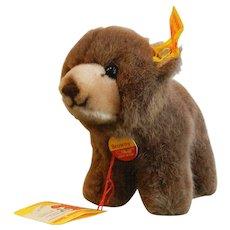 Vintage Steiff - Browny the Bear 1444/12