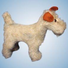 Steiff Terrier mohair  Dog with felt ears