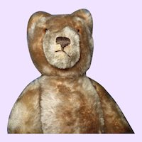 Steiff Teddy Bear Mohair raised button in ear