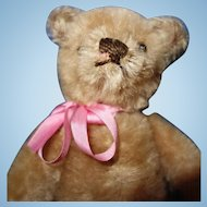 Small  1950 Mohair Teddy Bear