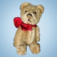 Schuco Teddy Bear Mohair 3 1/2 inches
