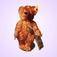 Steiff Rose Medalion Teddy Bear