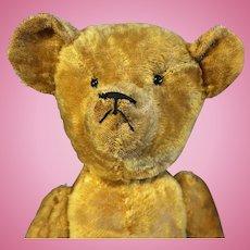 24 inch Early American Teddy Bear Mohair