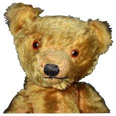 22 inch American Teddy Bear Mohair