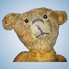 20 inch American Teddy Bear Mohair