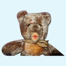 Steiff Zotty Teddy Bear