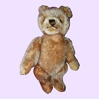 Steiff Teddy bear 9 inches tall