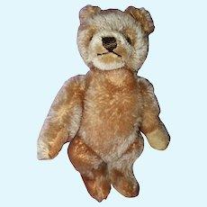 Steiff Teddy bear 9 inches tall