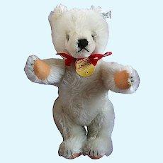 Steiff White Teddy Bear with tags