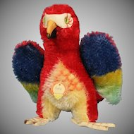 """Steiff Mohair """"Lora"""" Parrot with Tag~ Vibrant Coloring"""