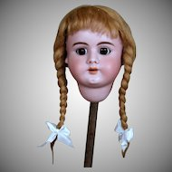 Nice Handwerck 99 Doll Head with Antique Wig