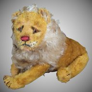 Steiff Lion 1909-1910 with FF button and partial white label