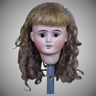 Sonneberg Doll Head with Wig