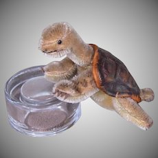 """Steiff """"Slo"""" the Turtle, Mohair, 6 inches long"""