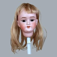"Pretty Walkure Bisque Head & Wig to Make 20-21"" Doll"