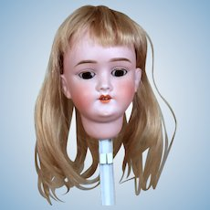 "Pretty Walkure Bisque Head & Wig to Make 20-21"" Doll"