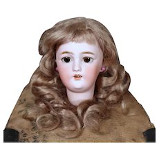Simon & Halbig 1159 Lady Doll Head with Original Wig, Size 4