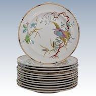 Royal Worcester Dinner Plates