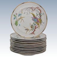 Royal Worcester Dinner Plates