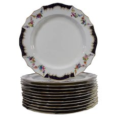 12 Cauldon Hand Painted Dinner Plates