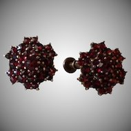 Antique Bohemian Garnet and Goldwash over Silver Starburst Screw Back Earrings c1900