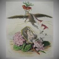 SALE:  Grandville Engraving 'Hortensia Couronne Imperiale' 1867 for Les Fleurs Animees.