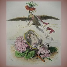 French Grandville Engraving 'Hortensia Couronne Imperiale' 1867 for Les Fleurs Animees.