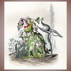 Original Grandville Victorian Engraving 'Aubepine' 1847 from Les Fleurs Animees.