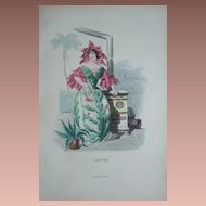 SALE:  Signed Grandville French Engraving 'Cactus' from Les Fleurs Animees..1852.