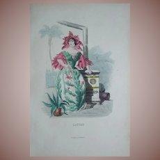 Original Grandville Engraving 'Cactus' from Les Fleurs Animees..1852.