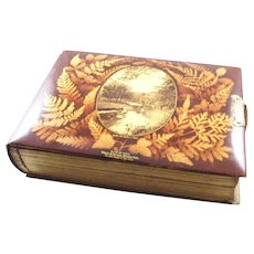 Stunning Antique Victorian Fernware Photo Album - a beauty!