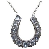 14 Karat White Gold Diamond Horseshoe Necklace