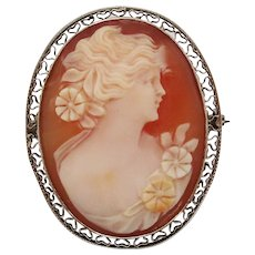 1920 Edwardian Hand Carved Three Color Shell Cameo in 10 Karat Gold Filigree Pin