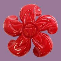 Large Mid Century Bakelite 5 Petal Carved Flower Pin