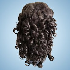 """RARE & Wonderful Condition Antique Brown Doll Wig w/Extensions 13"""" Circ."""