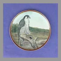 Vintage Peregrine Falcon Collector Plate