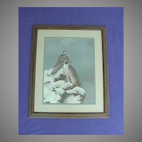 Vintage Bill Jaxson Thunder and Fury Hawk Print