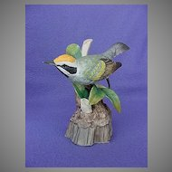 Vintage Audubon Golden Winged Warbler Figurine