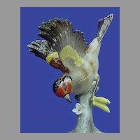 Vintage Hutschenreuther European Goldfinch
