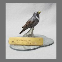 Miniature Ring Ouzel Pewter Thrush from Germany