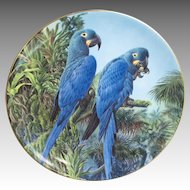Wedgwood Fragile Paradise Lears Macaws Plate