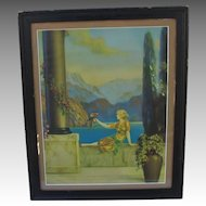 Fox Romance Canyon Print Lady Parrot