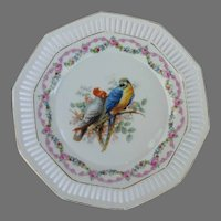Gang-Gang Cockatoo and Macaw Reticulated Plate from Germany