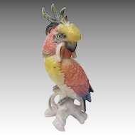 Vintage ENS Germany Cockatoo Figurine