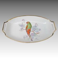 Vintage Bavaria Germany Relish Tray Dish with Parrot