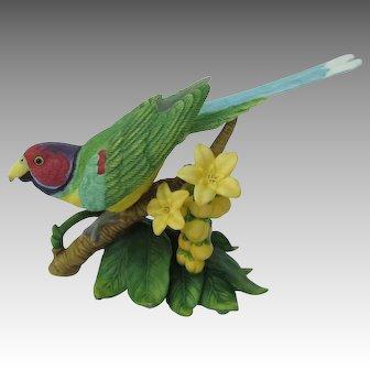 Lenox Plum-headed Parakeet Figurine