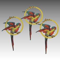 Vintage Parrot Die Cuts Set of Three