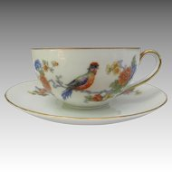 Vintage Bavaria Germany Cup and Saucer Set with Exotic Bird