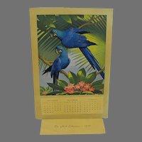 Vintage Hyacinth Macaw Salesman Sample Calendar