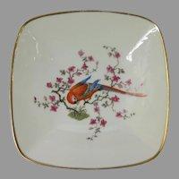 Vintage Rosenthal Macaw Parrot Trinket Dish